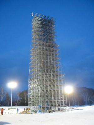2010fig2.jpg